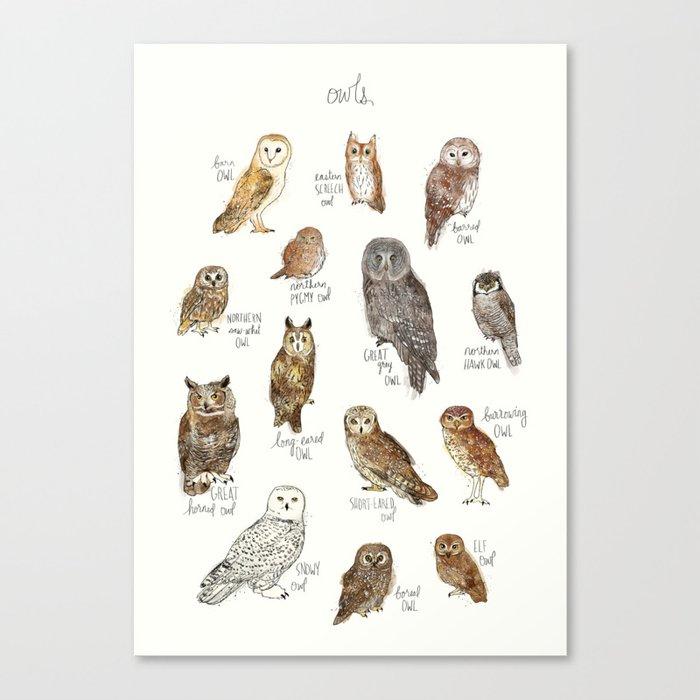 Owls Leinwanddruck