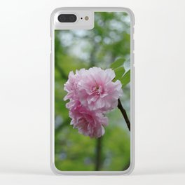 First cherry blossom Clear iPhone Case