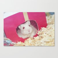 hamster Canvas Prints featuring Hamster by UliD