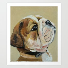 Dog, bulldog, little animal Art Print