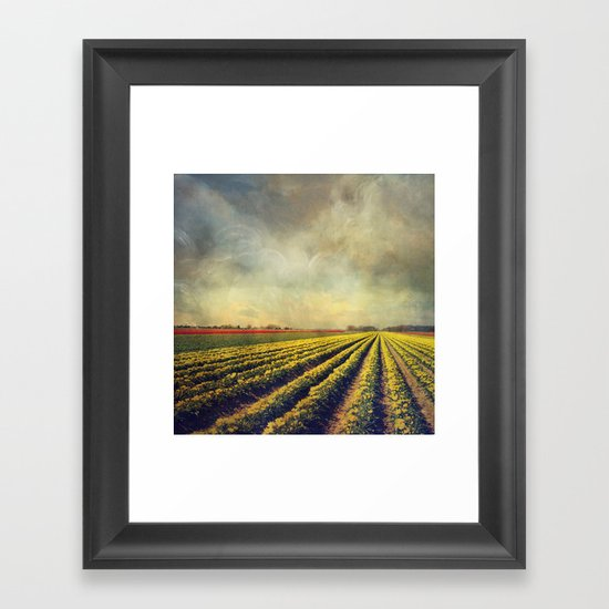 Chaos & Order - Field of Tulips Framed Art Print