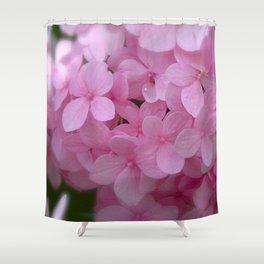 Pink Hydrangea - Flower Photography Shower Curtain