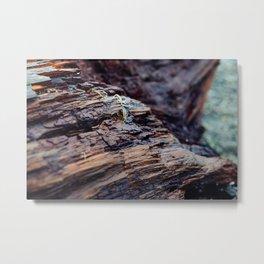 Wooden Texture Metal Print