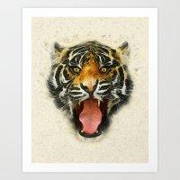 Tiger - Animal Faces Art Print