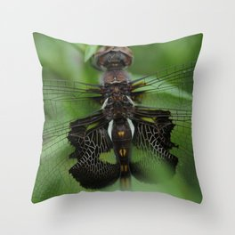 The Wings of a Dragonfly Throw Pillow
