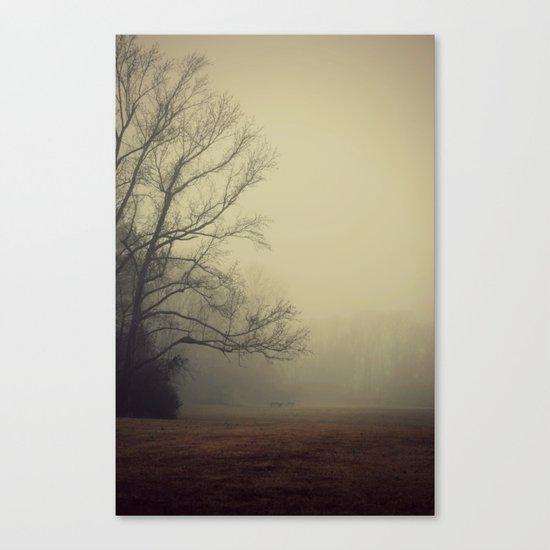 A Gathering of Fog Canvas Print