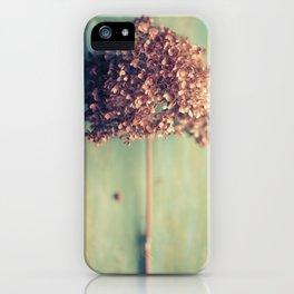 Autumnal Light no.2 iPhone Case