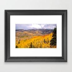 Buff Pass Framed Art Print