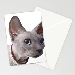 Canadian sphinx cat Stationery Cards