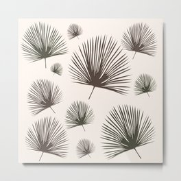 Softer Seasons (sand fan palm) Metal Print