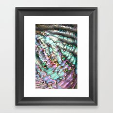Abalone Shell Framed Art Print