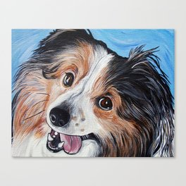 Sheltie Dog  Canvas Print