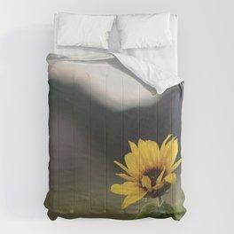 FLOWER OF SUN Comforters