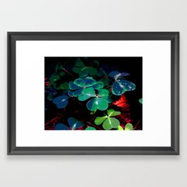 Field Of Clover Framed Art Print