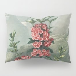 The Narrow-Leaved Kalmia from The Temple of Flora (1807) by Robert John Thornton Pillow Sham