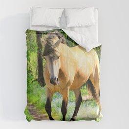 Back On Track Comforters