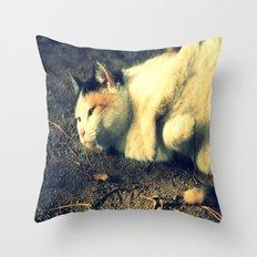 Tabby Throw Pillow