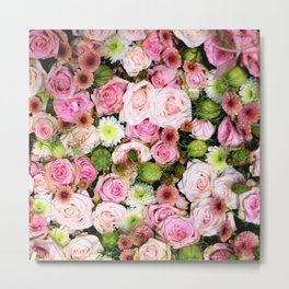 Bed of Roses Pink White Metal Print