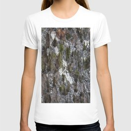 Old tree with character T-shirt
