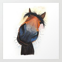 Happy Horse ' HAPPY DAVE ' by Shirley MacArthur Art Print