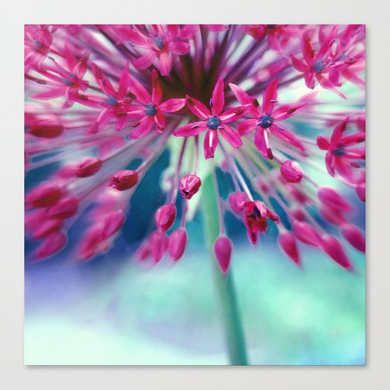 give power Canvas Print