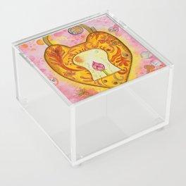 Gold Padlock Acrylic Box