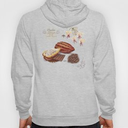 Chocolate and Pollinator Hoody