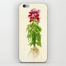 Snapdragon iPhone & iPod Skin