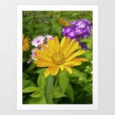 garden flower II Art Print