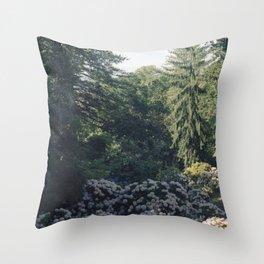 Garden in Sintra Throw Pillow