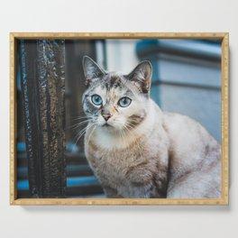 Cat by Erik-Jan Leusink Serving Tray
