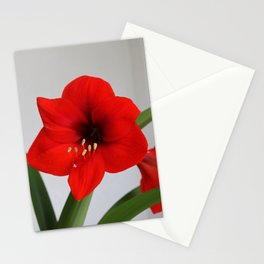 The Red Jewel Stationery Cards