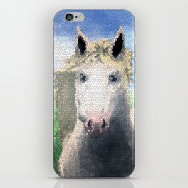 Horse Vitral iPhone Skin