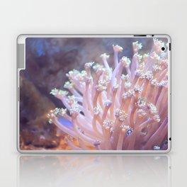 Anemone (?) Laptop & iPad Skin