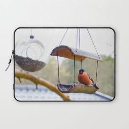 Eurasian bullfinch Laptop Sleeve
