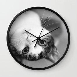 Upside down cat Wall Clock