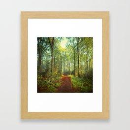 Forest Morning Walk Framed Art Print