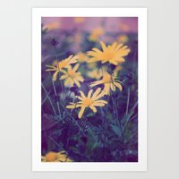 woodstock Art Prints featuring Woodstock Daisy  by Scotty Photography