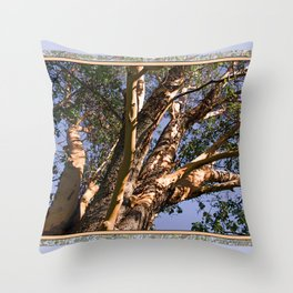 GREAT MADRONA TREE LOOKING SKYWARD Throw Pillow