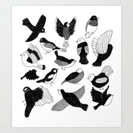 Birds & birds Art Print
