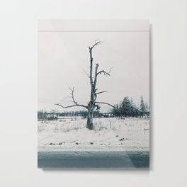 Lonely and dead Metal Print