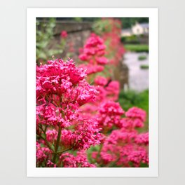 Usk Bridge Art Print