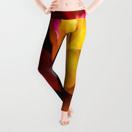 Rainbow Of Color Leggings