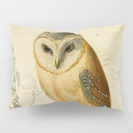 Naturalist Barn Owl Pillow Sham