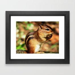 Just chippy! Framed Art Print