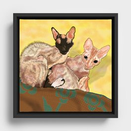 Tiger and George - the Cornish Rex Cats Framed Canvas