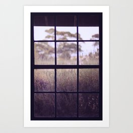 The View from the Window Art Print