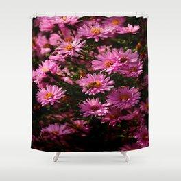 Wild Chrysanthemum Shower Curtain