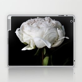 Peony - simply perfect II Laptop & iPad Skin