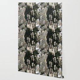 Longwood Gardens Orchid Extravaganza 59 Wallpaper